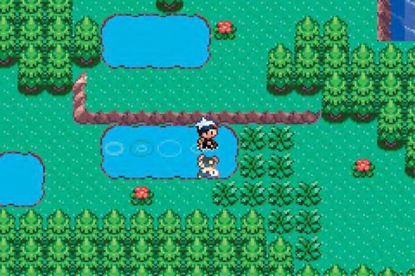 pokemon_advance_profilelarge